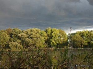 Ольгин пруд, пейзаж Колонистского парка