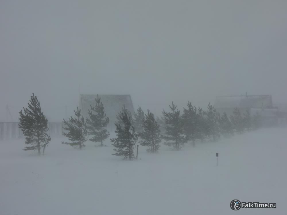 Горизонтальный снег