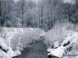 Зимний пейзаж на речке